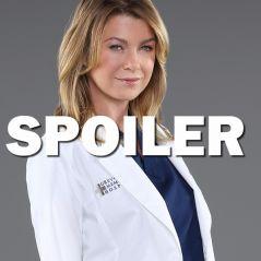 Grey's Anatomy saison 14 : Meredith bientôt en couple avec un nouveau personnage ?