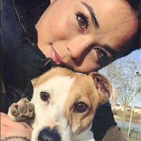 Claire (Les Anges 10) agressée, son chien volé : les internautes et les stars se mobilisent