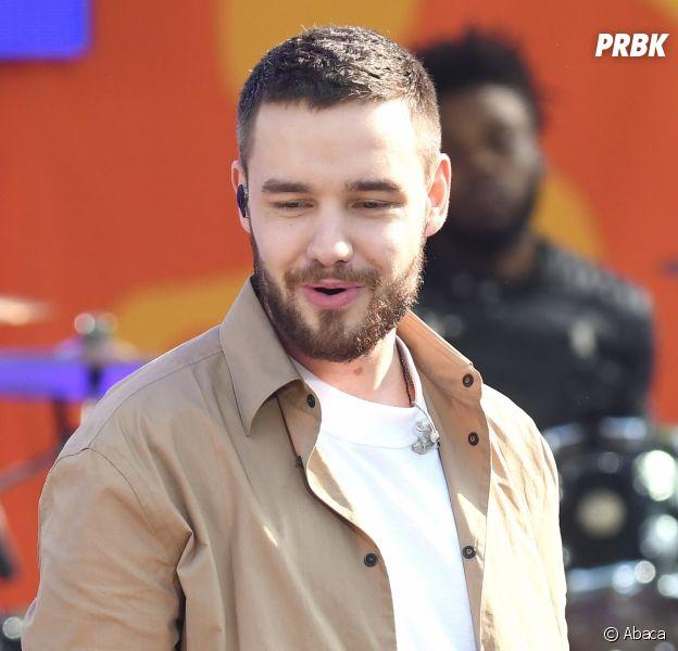 Liam Payne de nouveau en couple après sa rupture avec Cheryl Cole ? Qui est Cairo Dwek ?