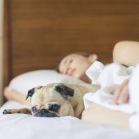 Selon l'armée américaine, on peut s'endormir en DEUX minutes en suivant ces quelques étapes simples