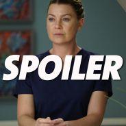 """Grey's Anatomy saison 15 : le nouveau """"couple"""" énerve déjà les fans"""