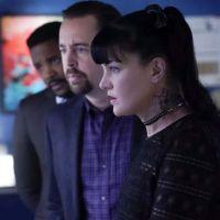 """NCIS saison 16 : """"c'est difficile, triste"""", Sean Murray (McGee) en manque de Pauley Perrette (Abby)"""