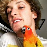 Logan Paul annonce la mort de Maverick : sa mascotte dévorée par son chien