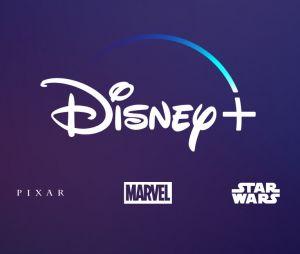 Disney+ VS Netflix : Disney pourrait empêcher ses abonnés de partager leurs comptes