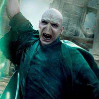 Harry Potter : Ralph Fiennes veut rejouer Voldemort