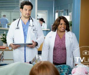Grey's Anatomy saison 16 : Bailey et DeLuca face à une nouvelle patiente