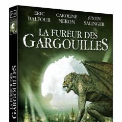 Le DVD La Fureur des Gargouilles en France le 23 novembre 2010