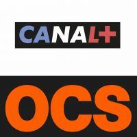 Canal+, OCS, ADN, Pornhub... Les chaînes et les sites qui deviennent gratuits pendant le confinement