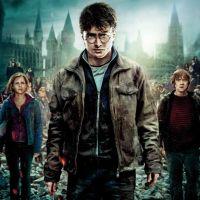 Job de rêve : être payé pour binge-watcher TOUS les Harry Potter
