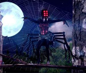 Mask Singer 2 : les nouveaux indices sur l'araignée