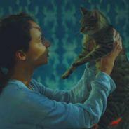 Plus belle la vie : les fans en colère après la mort d'un chat, la production réagit