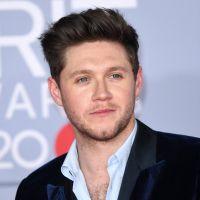 Niall Horan se sentait parfois comme un prisonnier durant la période One Direction