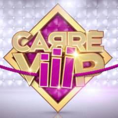 L'ouverture du Carré Viiip sur TF1 ... c'est ce soir à 20h45