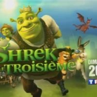 Shrek 3, le film sur TF1 ce soir : Shrek et l'âne reviennent (VIDEO)