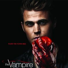 Vampire Diaries saison 3 : Stefan version Chuck Norris (SPOILER)