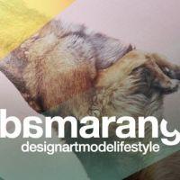 Bamarang, le nouveau haut lieu du design cool et décalé