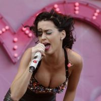 """Katy Perry reine du """"porno en chaise roulante"""" ? Russell Brand balance sur leur sex life"""