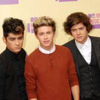 One Direction : bientôt incriminés pour avoir bu de l'alcool illégalement ?