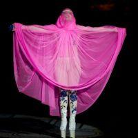 Lady Gaga : Madonna la nargue et lui propose un concert en duo ! Cap ou pas cap ?