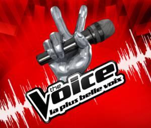 Stéphan Rizon a préféré The Voice !