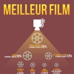 César 2013 :  Emmanuelle Riva, Camille Redouble, les gagnants sont... (d'après internet)