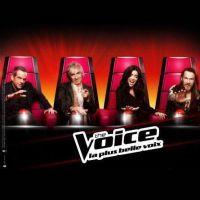The Voice 2 : les comptes Twitter des candidats