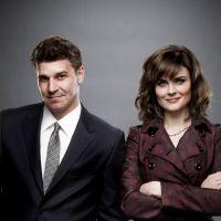 Bones saison 8 : fiançailles dans l'air ? (SPOILER)