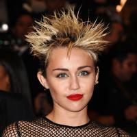 Miley Cyrus en pétard, Nicole Richie en bleu-gris, Anne Hathaway blonde... : folies capillaires au MET Ball 2013