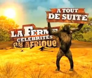 La ferme célébrités ne sera pas diffusée sur TF1