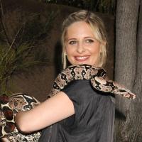 Sarah Michelle Gellar : lassée de jouer les chasseuses de vampires dans Buffy