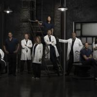 Grey's Anatomy saison 10 : un nouvel acteur sur le départ ? (SPOILER)
