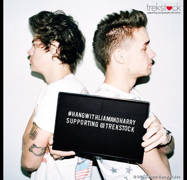 Harry Styles et Liam Payne se mettent en vente pour la lutte contre le cancer
