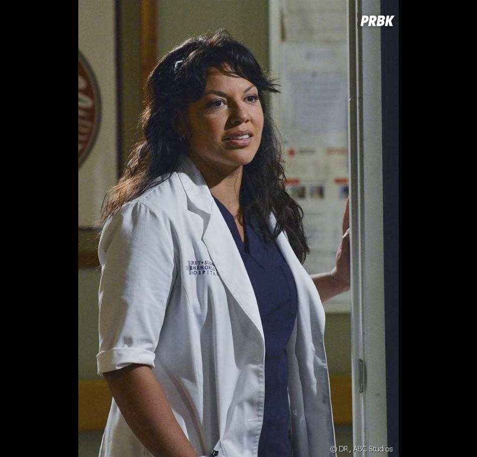 Grey's Anatomy saison 10, épisode 3 : Sara Ramirez sur une photo