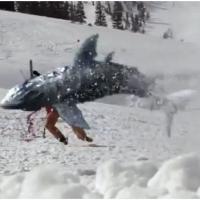 Avalanche Sharks : le film avec des requins... au ski
