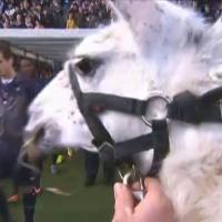 Serge le Lama, footballeur du dimanche à Bordeaux