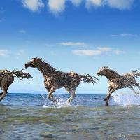 [ART] Impressionnant : des chevaux grandeur nature sculptés dans du bois
