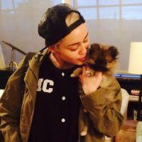 Miley Cyrus : son nouveau chien déjà mis à la porte
