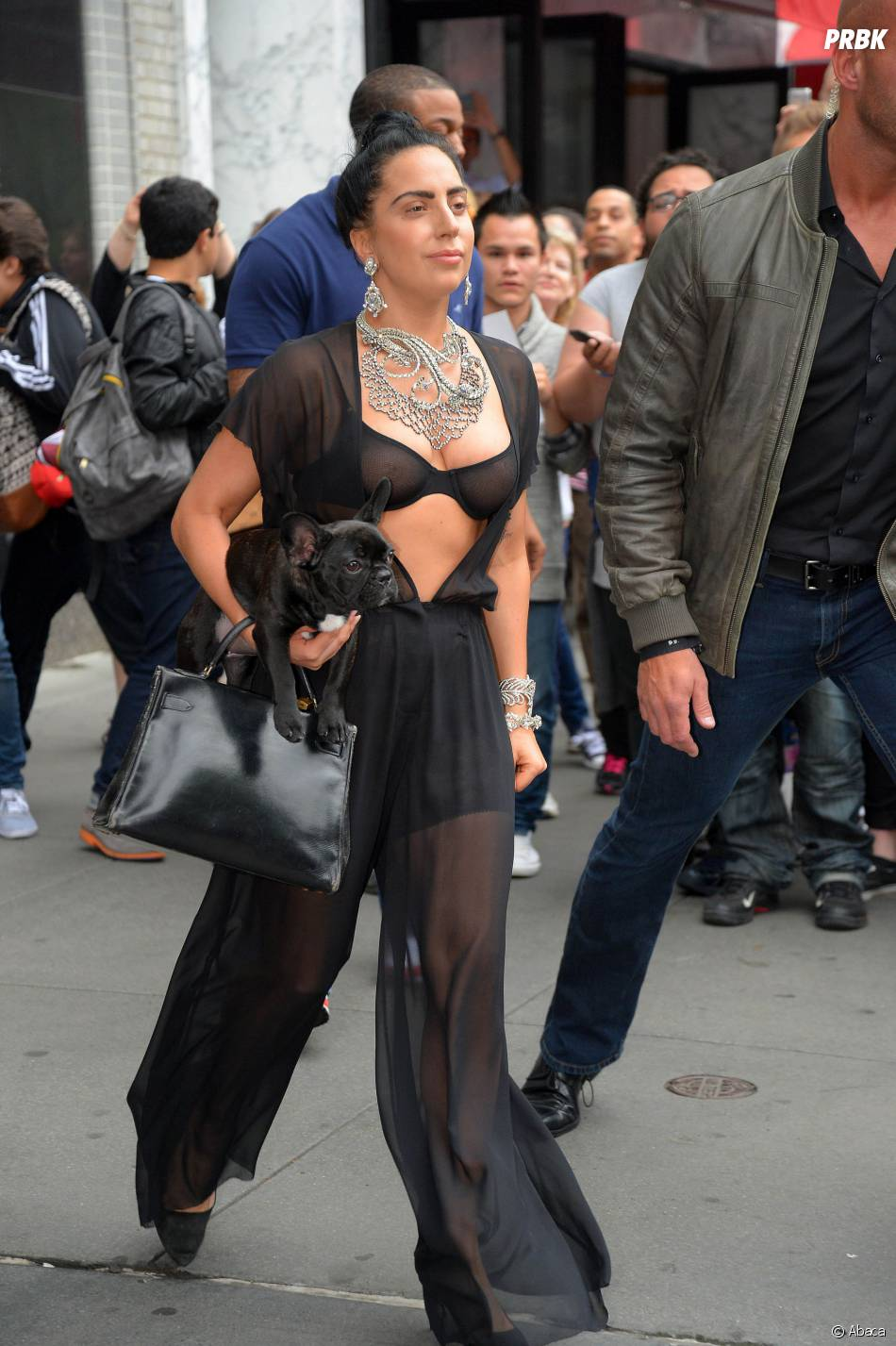 Lady Gaga se balade avec son chien, à New York le 12 juin 2014