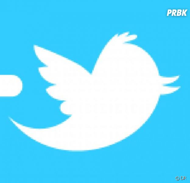 Twitter accueille les GIF