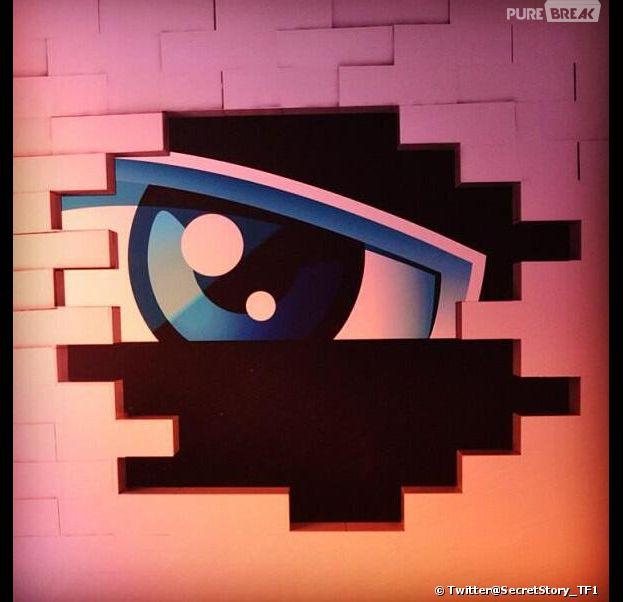 Secret Story 8 : TF1 a donné des informations sur les candidats, la Maison des Secrets et la quotidienne