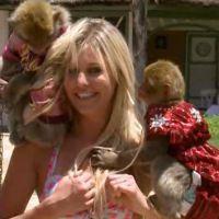 LCVSLM : Adixia tripotée par un singe, Jessica et Julien en guerre