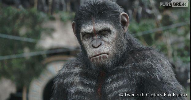 La Planète des singes 2 : la fin alternative dévoilée