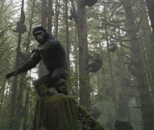 La Planète des singes 2 : une fin alternative moins centrée sur César