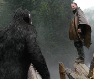 La Planète des singes 2 : Jason Clarke sur une photo