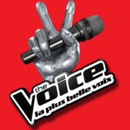 The Voice 4 :un talent de la saison 2 & le membre d'un groupe connu au programme