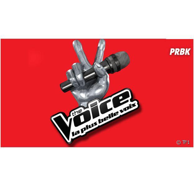 The Voice 4 : un ancien membre d'un groupe à succès et un talent de la saison 2 candidats ?