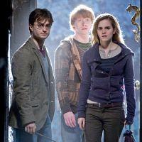 Harry Potter : 12 nouvelles histoires publiées avant Noël