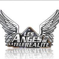 Les Anges de la télé-réalité 7 : nouveau nom pour l'émission et candidats dévoilés