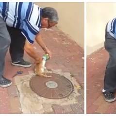 Coincé dans une boite de conserve, ce chat rencontre son héros