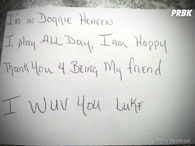 Luke, le petit garçon de 3 ans, a écrit plusieurs lettres à son Beagle décédé. Le toutou lui a répondu depuis le paradis des chiens !
